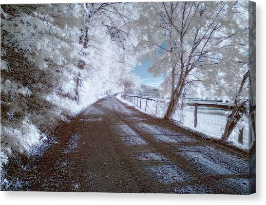 Infrared Snow In July Canvas Print