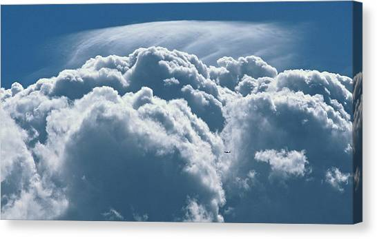 Insignificance Canvas Print