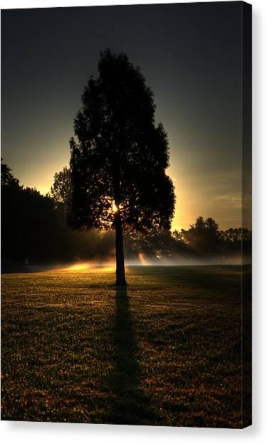 Inspirational Tree Canvas Print