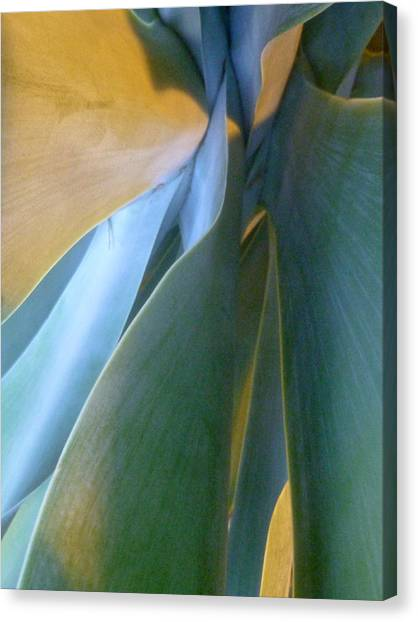 Interlude II Canvas Print