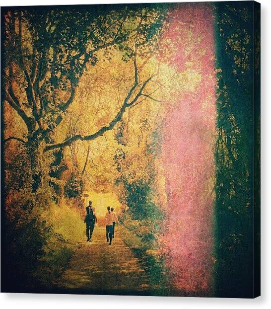 Forest Paths Canvas Print - Into The Light by Alexandra Cook