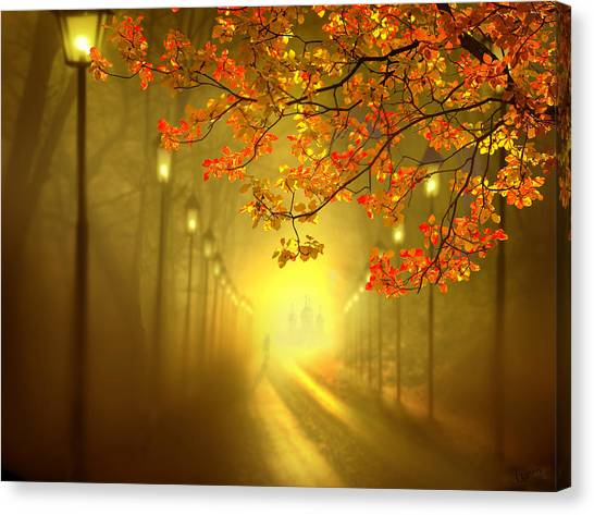 Into The Light Canvas Print by Igor Zenin
