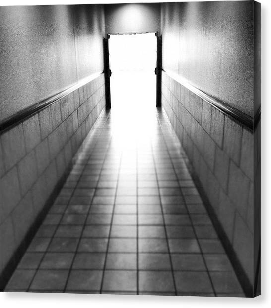 Pathway Canvas Print - Into The Light by Trever Miller
