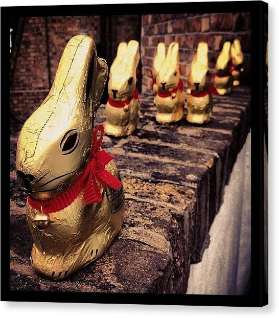 Rabbits Canvas Print - Invasion Of The Chocolate Bunnies by Rillaith