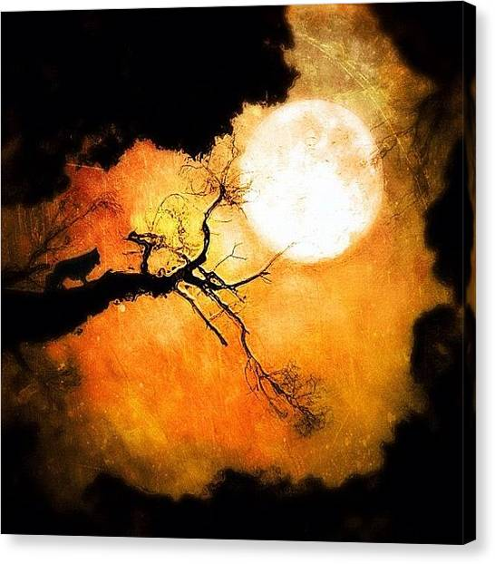 Horror Canvas Print - #iphoneography #melbourne #australia by Dan Kerr