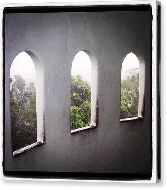 Rainforests Canvas Print - #iphonography, #iphonesia by Vanessa Valedon