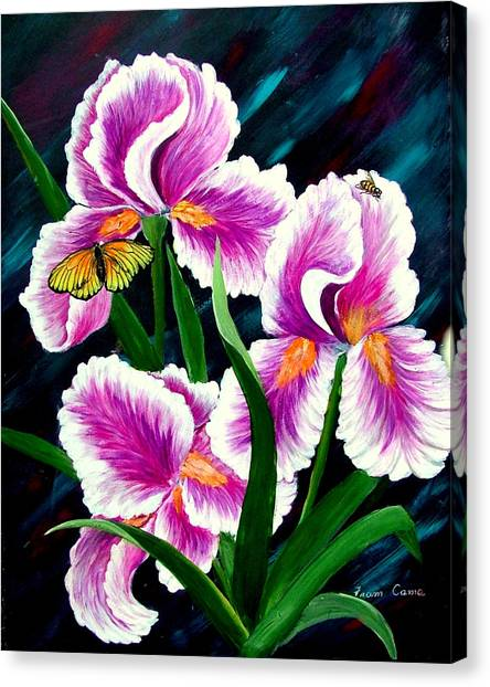 Iris And Insects Canvas Print