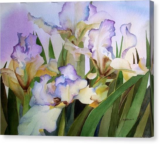 Iris IIi Canvas Print