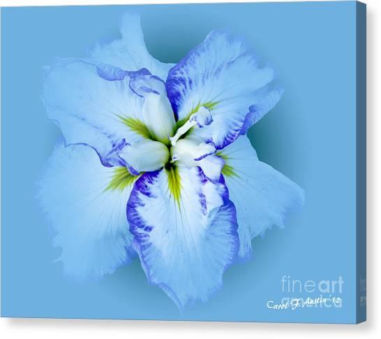Iris In Blue Canvas Print
