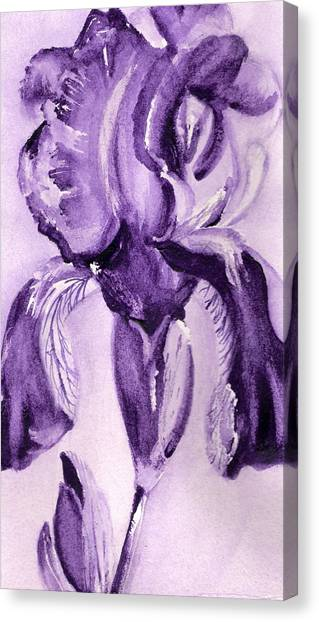 Iris Study In Purple Canvas Print