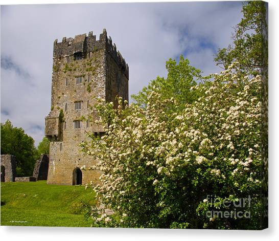 Irish Travel Landscape Aughnanure Castle Ireland Canvas Print