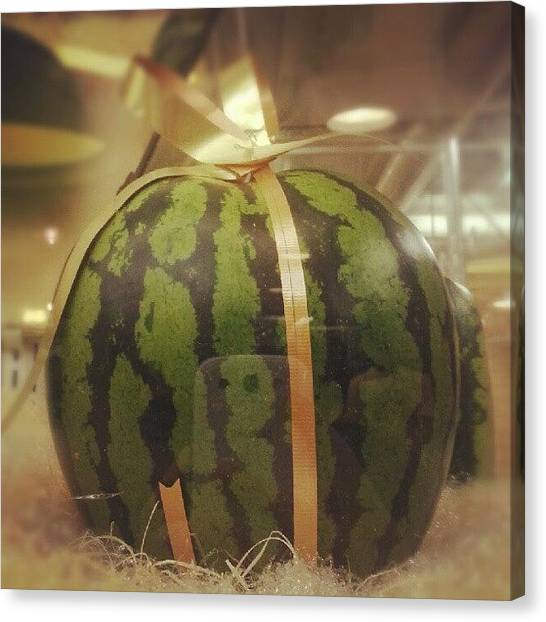 Watermelons Canvas Print - It Is Summer Now, Let Us Have A Sweet by Xpedrongx XDD