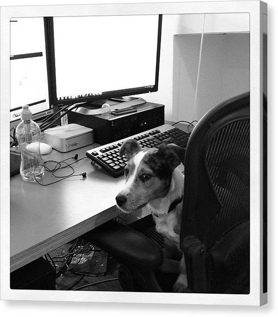Keyboards Canvas Print - It's A Dog's Life by Rillaith