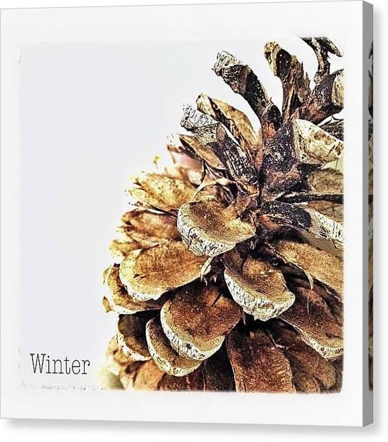 Storks Canvas Print - It's Winter Time ⛄ by Melanie Stork