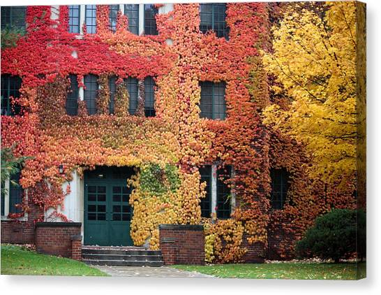 Western Michigan University Wmu Canvas Print - Ivy League by Penny Hunt