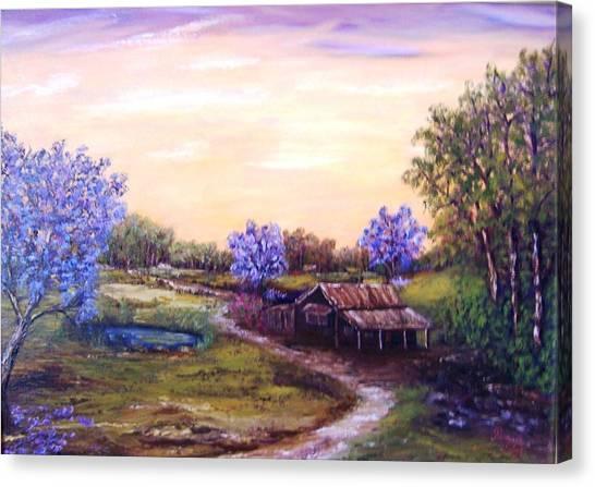Jacarandas Canvas Print