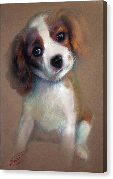 Terrier Canvas Print - Jack Russell Terrier Dog by Ylli Haruni