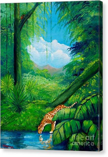 Jaguar Drinking Water Canvas Print