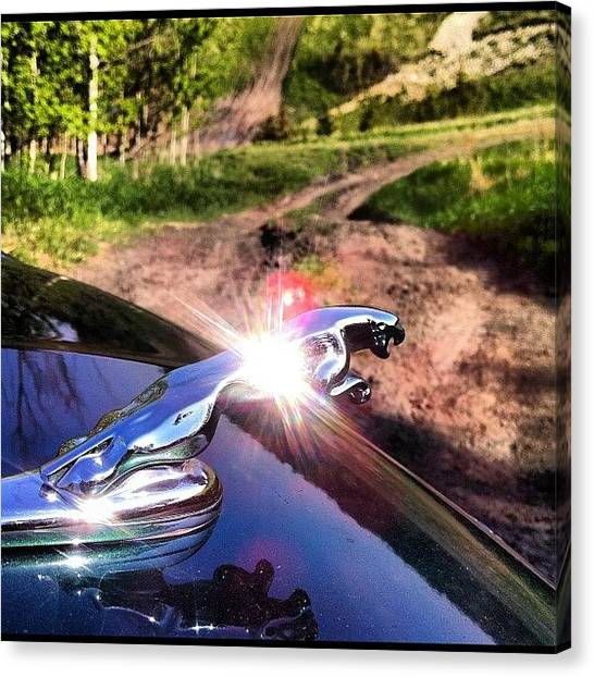 Offroading Canvas Print - #jaguar #xtype #emblem #summer #offroad by Sam Sana