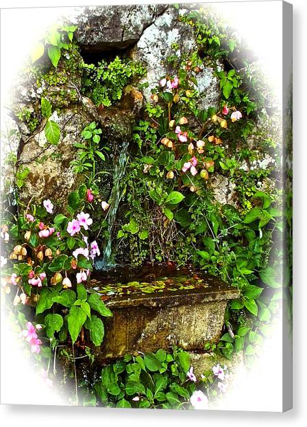 Japanese Water Feature Canvas Print
