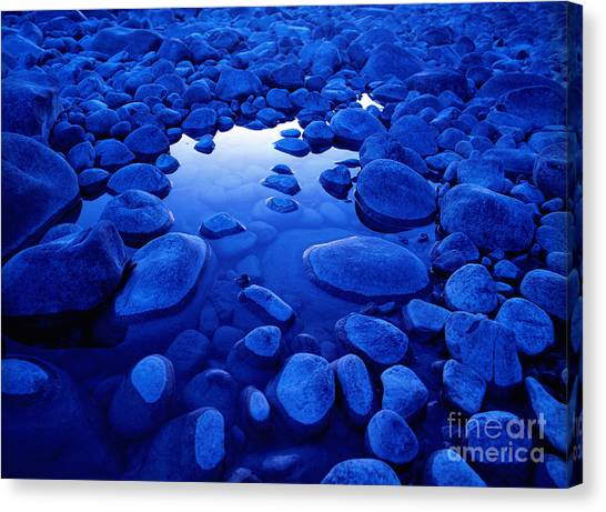 Jasper - Blue Boulders Canvas Print by Terry Elniski