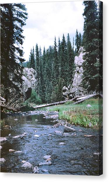 Jemez River Canvas Print by Mirii Elizabeth