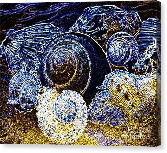 Abstract Seashell Art Canvas Print