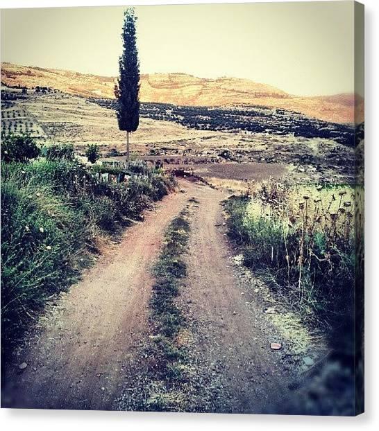 Roads Canvas Print - #jo #jordan #amman #nature #green #road by Abdelrahman Alawwad