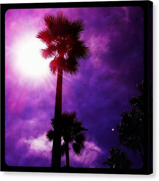 Palm Trees Canvas Print - Just Another Venusian Day by S Michelle Reese