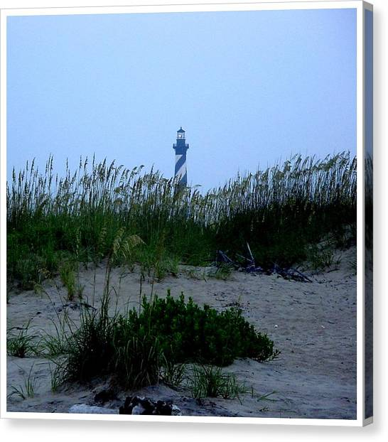 Just Beyond The Sea Oats Canvas Print by Frank Wickham