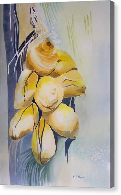 Juvenile Coconuts Canvas Print