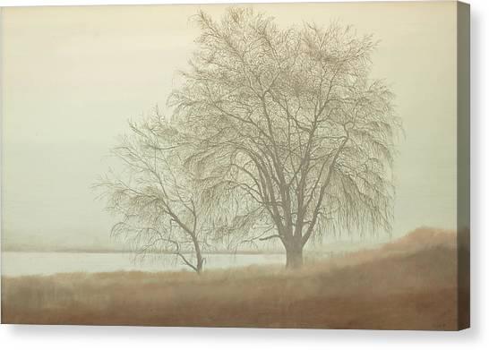 Kah Tai Fog Canvas Print