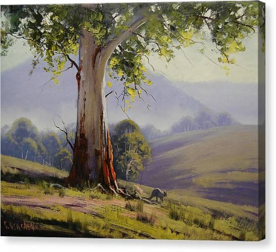 Kangaroo Canvas Print - Kangaroo And Gums by Graham Gercken