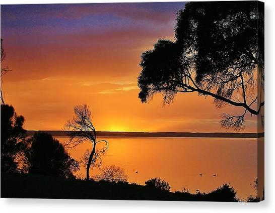 Kangaroo Island - Sunrise Canvas Print by David Barringhaus