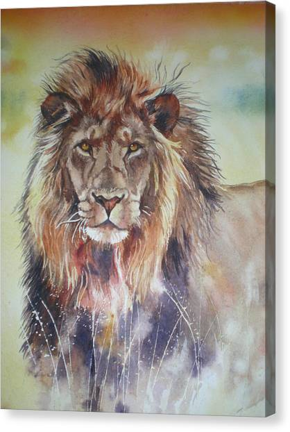 Kenyan Lion Canvas Print