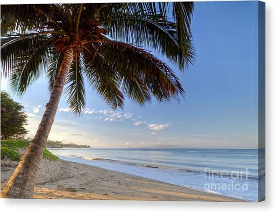 Beach Sunrises Canvas Print - Kihei Maui Hawaii Sunrise Coconut Palm  by Dustin K Ryan