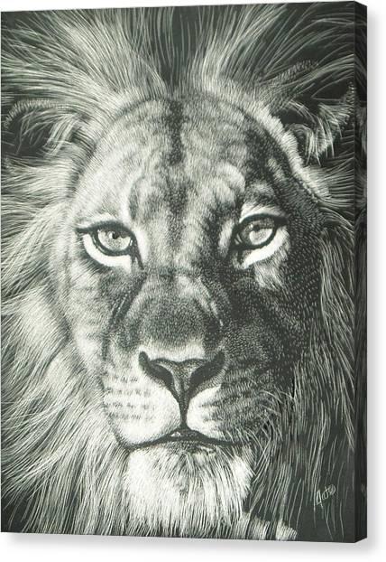 King 2 Canvas Print by Joanna Gates
