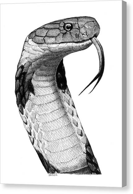 King Cobra Canvas Print