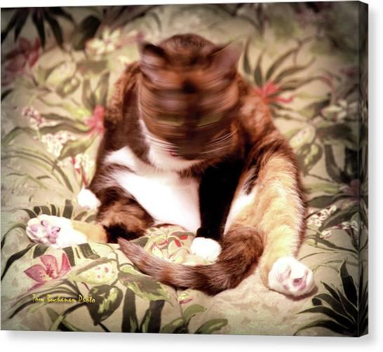 Kitty Says No Canvas Print