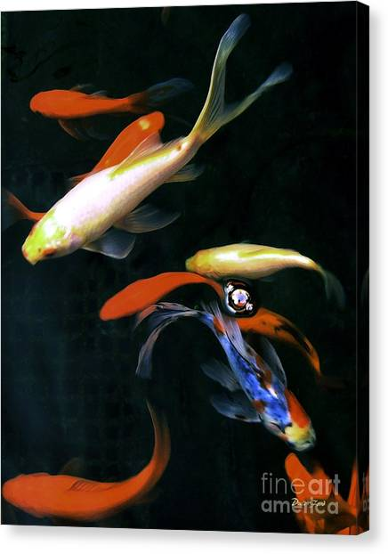 Koi Pond Canvas Print