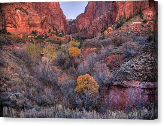 Kolob Canyon Canvas Print