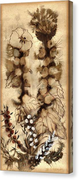 Kotsim Thorny Desert Plants In Brown Flowers Leaves Monochrome White   Canvas Print