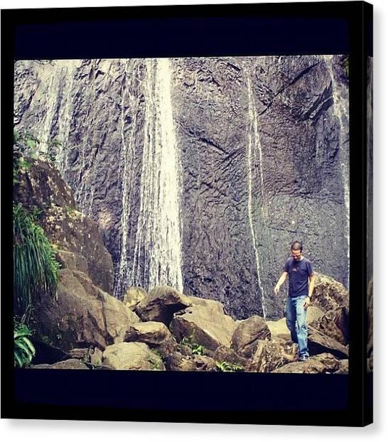 Rainforests Canvas Print - La Coca #falls At #elyunque #rainforest by Luis Alberto