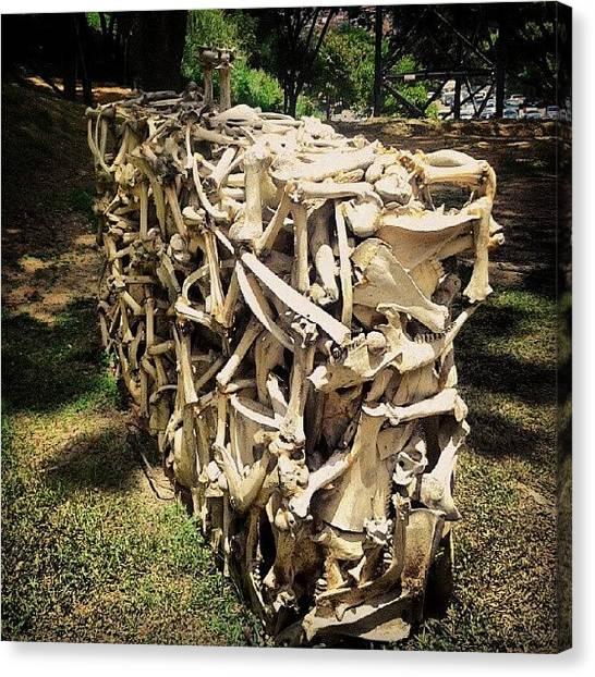 Spiral Canvas Print - La Danza De Los Esqueletos by Gustavo Nieto