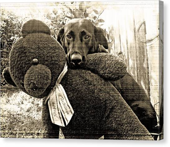 Labrador And Holiday Teddy Canvas Print