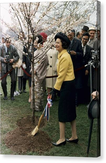 Lyndon Johnson Canvas Print - Lady Bird Johnson Planting A Tree by Everett