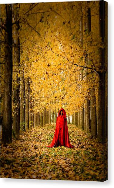 Lady In Red - 5 Canvas Print