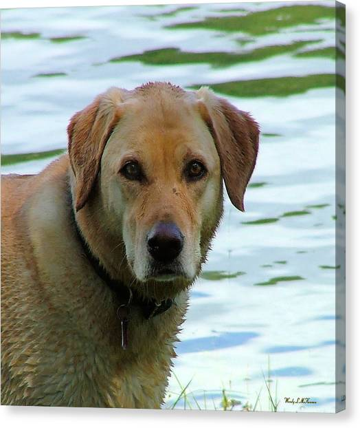 Lake Dog Canvas Print