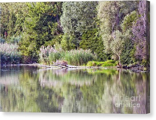 Lake Reflections Canvas Print by Odon Czintos