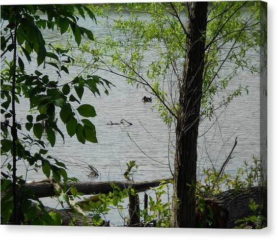 Lake View Canvas Print by Craig Keller